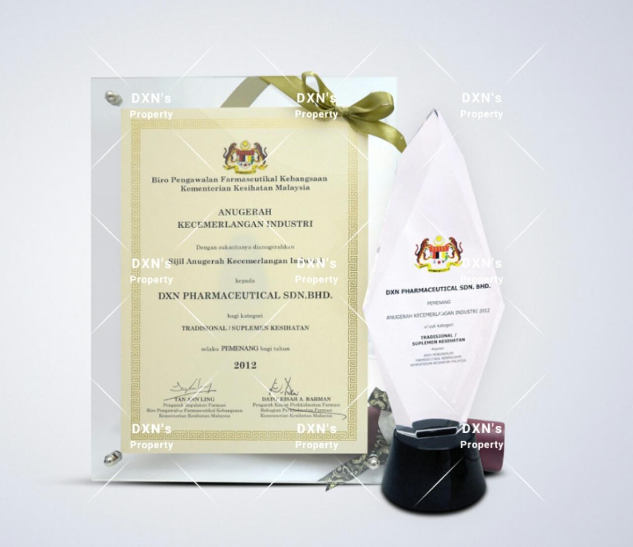 Premio a la Excelencia industria